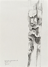 "1986<br />graphite sur papier<br />26.7 x 19.2 cm<br />Collection of the Artist<br />Notable Canadian artist Emily Carr once looked to First Nation's totem poles as subjects for her paintings. The time and context were very different than that of today. Carr believed, as many did during that period that First Nations were a ""dying race"" and that documenting their life, art and culture was a way in which to capture and chronicle their existence for posterity. Tanabe's interest in this subject is much more contemporary and formal. The existence of a charred totem represented a unique subject for the artist to explore graphically. The pole has been removed from its context compositionally by the artist's hand, focusing viewers to study the unique figures portrayed on the First Nation's symbol that have been ravaged by fire. Through a skillful hand, Tanabe captures the aesthetic beauty of damage and decay while questioning the history, context and fate of these iconic Haida objects."