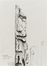 1986<br />Graphite on paper<br />26.5 x 19.0 cm<br />Collection of the Artist